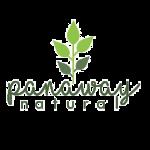 logo panaway