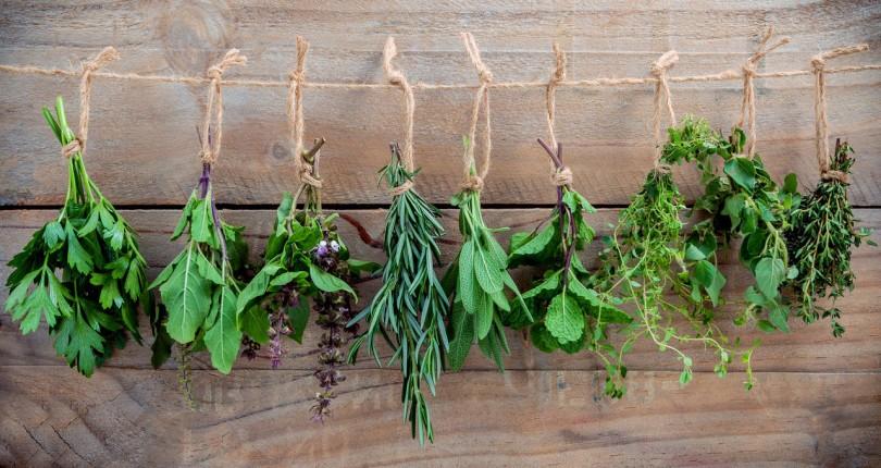 Hierbas aromáticas en tu cocina